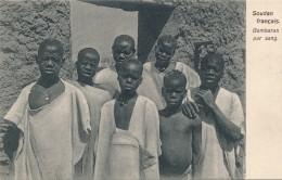 H2 - SOUDAN FRANÇAIS - Bambaras Pur Sang - Sudan