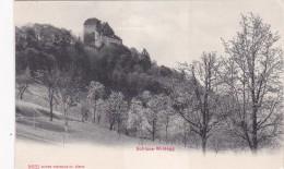 Schloss Wildegg (5631) - AG Aargau
