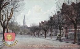 AP29 The Boulevard And Free Library, Weston Super Mare - Local Publisher - Weston-Super-Mare