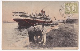 Old Postcard Indonesia Sumatra Sabang 1910' Elephant    Dutch East Indies Stamp - Indonesien