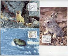 GREENLAND 1994 Native Mammals II On Maximum Cards.  Michel 249-51 - Maximum Cards