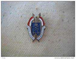 Pin's Militaire: 1er Régiment De Dragons, ROYAL D'ABORD, PREMIER TOUJOURS - Militaria