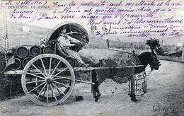 DINTORNI DI ROMA - Kutsche Mit Geschmücktem Pferd, Transport Von Fässer 1912 - Transports