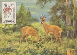 Tchécoslovaquie Carte Maximum 1963 Yvert 1309 - Chevreuil - Thème Animaux  - Illustration 1 - Czechoslovakia