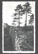 Poilvache - Parc National De Poilvache - Murs D'enceinte - Nels Photothill - Yvoir