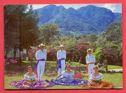 (213) Costa Rica Unused Postcard - Costa Rica