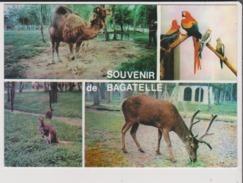 CPM - Souvenir De  BAGATELLE - Parc D'Attractions Entre BERCK Et MERLIMONT - Le Zoo - Multivues - Cerf Dromadaire Kangou - Sonstige Gemeinden
