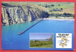 (247) New Zealand Written Postcard 2 Scana - New Zealand