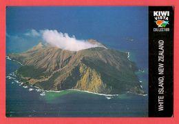 (250) New Zealand Unused Postcard - New Zealand