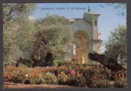 68593/ JERUSALEM, Garden Of Gethsemane - Israël