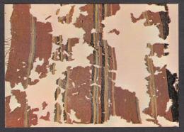 68597/ JERUSALEM, Israel Museum, Shrine Of The Book, Woollen Spread, Cave Of Letters - Israël