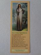 D1012-Santino Segnalibro Santuario Madonna Della Corona (Verona) - Santini