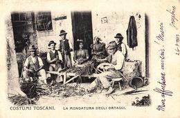 Thématiques Italie Italy Costumi Toscani La Mondatura Degli Ortaggi Cachet 1902 Timbre Paysans Nettoyant Légumes - Italia