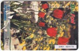 BULGARIA A-181 Chip BulFon - Plant, Flower, Tulip - Used - Bulgaria