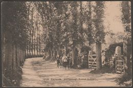 Lower Marlborough Avenue, Falmouth, Cornwall, 1912 - Photochrom Postcard - Falmouth