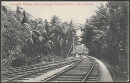 Sea-Side Railway, Cocoanut Estate, Colombo, Ceylon, C.1910s - Plâté Postcard - Sri Lanka (Ceylon)