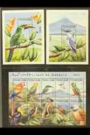 BIRDS - STAMPS SIGNED BY ARTIST Nicaragua 2000 Birds Sheetlet And Pair Of Mini-sheets, SG MS3954 And MS3955, These Each  - Stamps