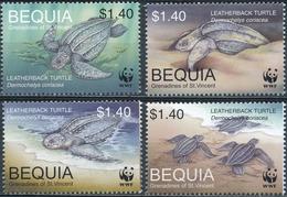 Bequia  Schildpadden - Schildpadden