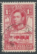 Bechuanaland Protectorate. 1938-52 KGVI. 1d Used SG 119 - Bechuanaland (...-1966)