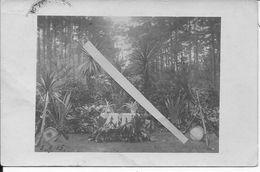 1915 Ypres Polygone Wood Fresenberg Chapelle Allemande Du R.I.R 248 54è R.D Dans Les Bois 1 Carte Photo Ww1 1wk 14-18 - War, Military
