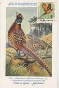 Bulgarie Carte Maximum 1961  Yvert  1062 - Faisan - Thème Animaux Oiseaux - Briefe U. Dokumente