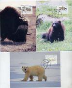 GREENLAND 1995 Native Mammals III On Maximum Cards.  Michel 274-76 - Maximum Cards