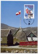 GREENLAND 1995 National Flag On Maximum Card.  Michel 273 - Maximum Cards
