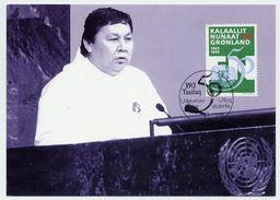 GREENLAND 1995 UNO Anniversary On Maximum Card.  Michel 259 - Maximum Cards