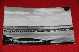 56 Penestir Sur Mer Parc à Moules 1962 - Unclassified