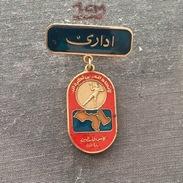 Badge (Pin) ZN006220 - Handball Arabic Federation / Association / Union Palestina Cup - Handball