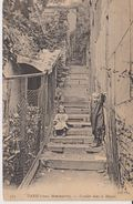 Paris - Escalier Dans Le Maquis - ND Phot - Arrondissement: 18