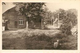 Postel : Rustig Hoekje Met Oude Boerderij ( Hoeve) - Retie