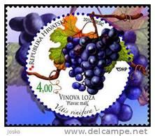 WINE & GRAPEVINE - Croatian Flora Fruits Vigne ( Croatian Stamp MNH** ) Vin Vino Wein Vinho Wijn Grape Raisin Grapes Uva - Wines & Alcohols