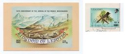 POSTCARD Stamp LESOTHO Bird Birds Oiseaux Oiseau FRENCH MISSIONARIES AFRICA - Lesotho