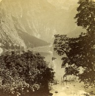 Allemagne Alpes Bavaroises Obersee Le Lac Ancienne Stereo Photo Jarvis 1890's - Photographs