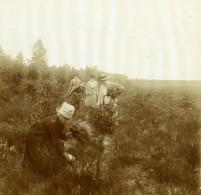 Belgique Brasschaet Bruyere Groupe De Dames Ancienne Photo Stereo Amateur 1919 - Photographs