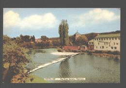 Newtown - The River Severn - Montgomeryshire
