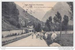 65) Cauterets.- Route De Pierrefitte à Cauterets - (animée - Vaches - Bestiaux) - Cauterets
