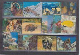 LOT DE  TIMBRES HOLOGRAPHIQUE ANIMAUX ET POISSONS  -COTE 42 EURO -  V/IMAGE - Bhoutan