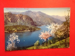 Lago Di Como 01947 - Como