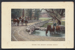 Animals Postcard - Horses - Beside The River's Wooded Reach    DC1086 - Paarden