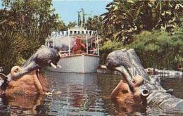 USA        185        Disneyland.Jungle Cruise - Orlando