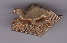 Pin's RALLYE PARIS DAKAR SIGNE ARTHUS BERTRAND - Arthus Bertrand