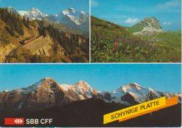 (CH1039) SCHYNIGE PLATTE - BE Berne