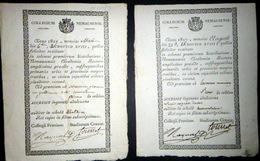 30 NIMES PEDAGOGIE ACCESSIT DU COLLEGE DE NIMES ENSEIGNEMENT  2 EXEMPLAIRES EN BEL ETAT 1817 1819 TRES BEL ETAT - Diplomi E Pagelle