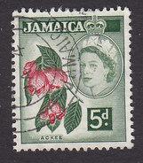 Jamaica, Scott #165, Used, Ackee Fruit, Issued 1956 - Jamaica (...-1961)