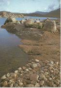 ABHA LAKE.  (scan Verso - Arabie Saoudite