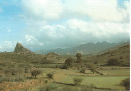 Agricultural Area Near Taif.  (scan Verso - Arabie Saoudite
