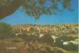 HEBRON, VUE GENERALE.  (scan Verso) - Palestine