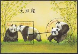 Specimen, Austria Sc1917 Panda Research In Austria, Bamboo, Bambou - Otros